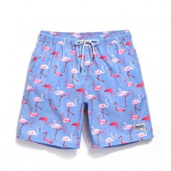 Men's Swimwear Print Flamingo Passaros