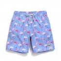 Men's Swimwear Print Flamingo Passaros