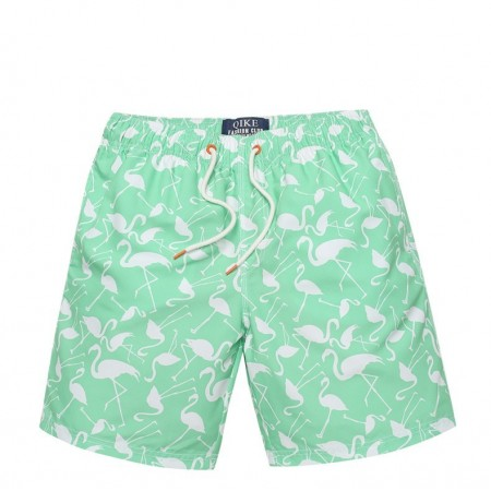 Men's Casual Swimwear Fashion Beach Summer Print Ardeidae