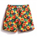 Tropical Brazilian Floral Colorful Short in Male Tones