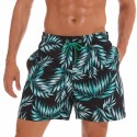 Hawaiian Bermuda Casual Men's Florida Swimwear