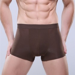 Boxershorts Brown Men Lisa Basic Beach Fashion Intima