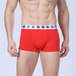 Boxer briefs Red Men Lisa Basic Calvin Embroidered Various Colors Sun