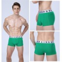 Boxer briefs Green Men Lisa Basic Calvin Embroidered Various Colors Sun