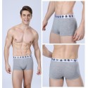 Boxer briefs Gray Men Lisa Basic Calvin Embroidered Various Colors Sun