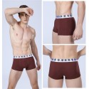 Boxer Briefs Brown Men Lisa Basic Calvin Embroidered Various Colors Sun