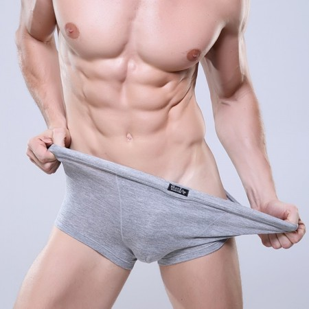 Boxer Briefs Gray Clean Basic Men Sex Summer Beach Comfortable
